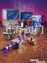 斯派莎克锅炉排污系统BCV30、BC3200、BC3210、CP30、FV、SC20、KBV20、M