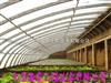 抗压花卉养殖大棚 大棚骨架 中原温室工程